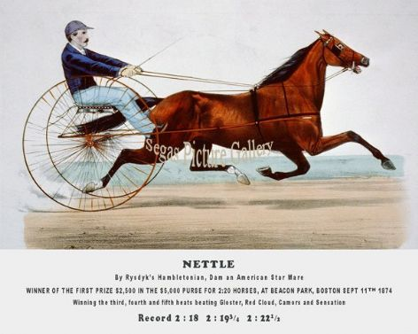 Fine art Horseracing Print of the 1800&#39;s Racing and Trotting of Nettle Winner of the First Prize $2,500 in the $5,000 Purse for 2:20 Horses, at Beacon Park, Boston Sept 11th 1874 by Currier and Ives reproduced by Segas Picture Gallery.<br />Open Editition